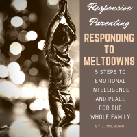 Responding to Meltdowns: 5 Steps to Emotional Intelligence and Peace for the Whole Family (Revised Shorter Version)